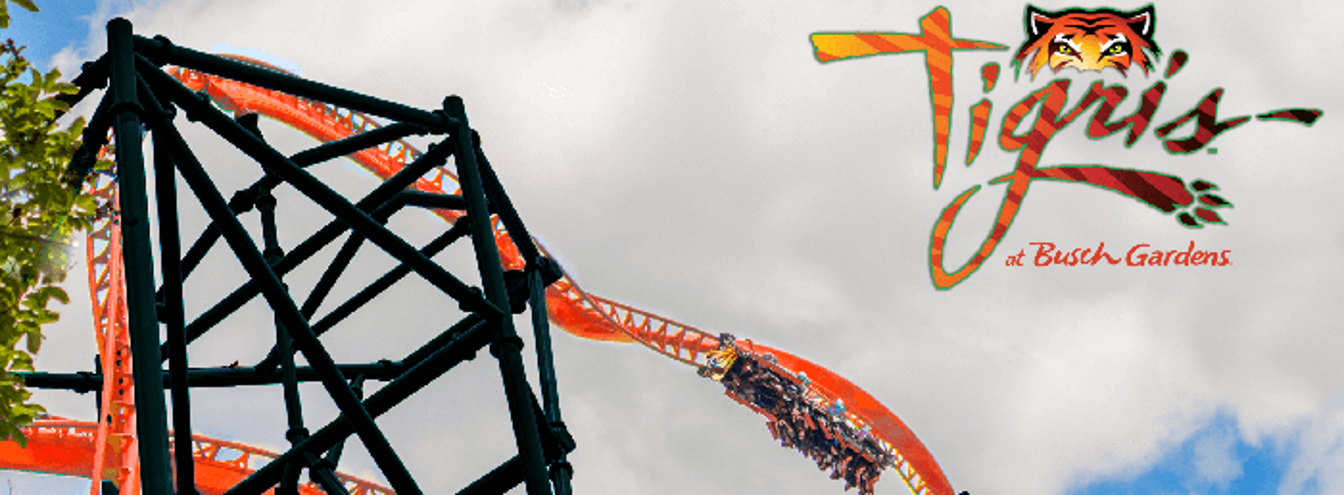 Tigris concept art at Busch Gardens Tampa.