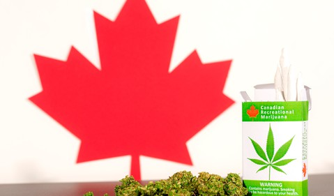 Marijuana buds, cigarettes, and Canadian maple leaf