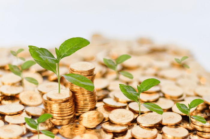 Seedlings sprouting from a pile of gold coins.