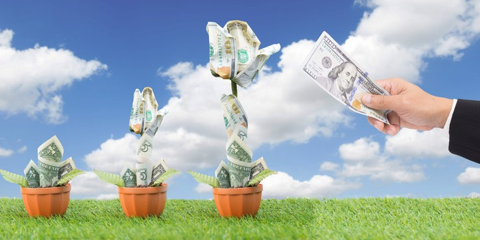 """Three """"dollar-trees"""" with each one getting progressively taller -- concept for growing money or dividends."""