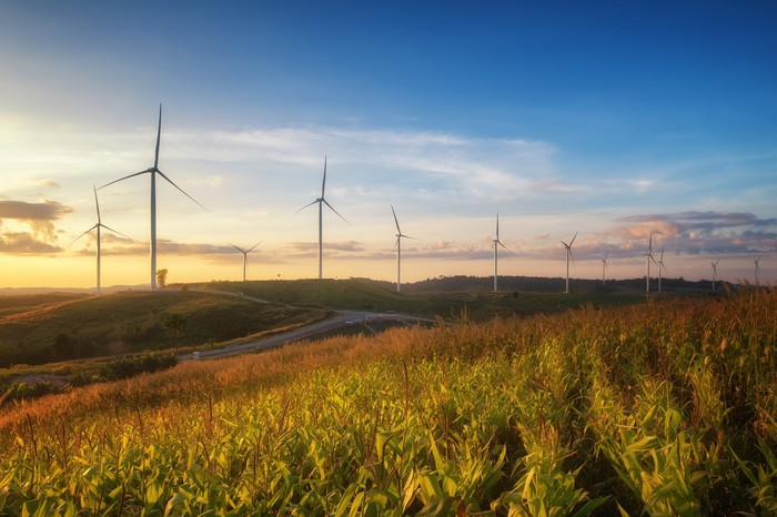 Wind turbines in a field at sunset.