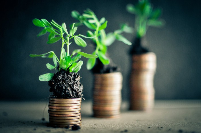 Ascending stacks of coins, with plants growing atop them.