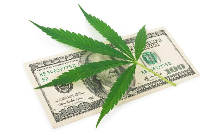 A marijuana leaf on top of $100 bill.