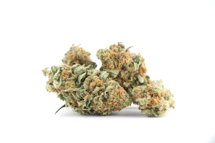 Picture of a marijuana bud.