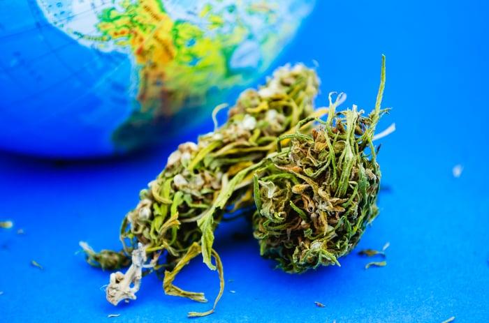 Marijuana in front of a globe