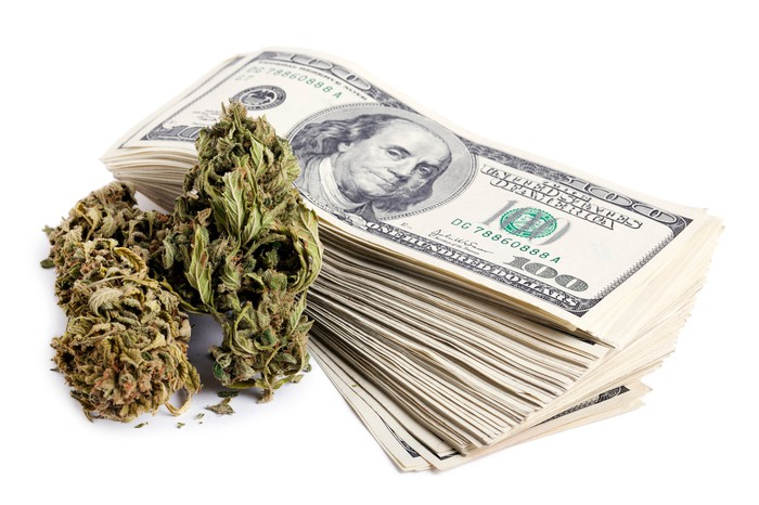 Two pot buds sitting next to a stack of hundred dollar bills.