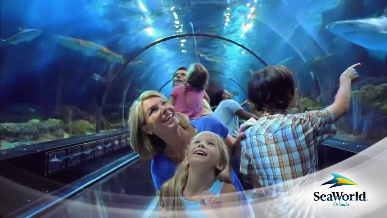Shark Encounter at SeaWorld Orlando with guests riding a moving sidewalk through a shark-filled aquarium.