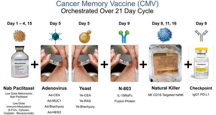 Displays the administration cycle of the six cancer fighting therapies administered to patients by NantKwest.