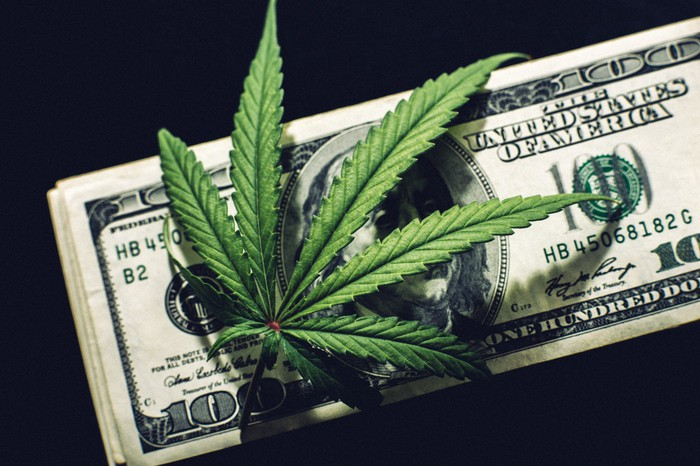 A cannabis leaf lying atop a neat stack of hundred dollar bills with a dark background.
