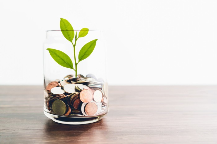 "A plant ""grows"" out of a vase of coins."