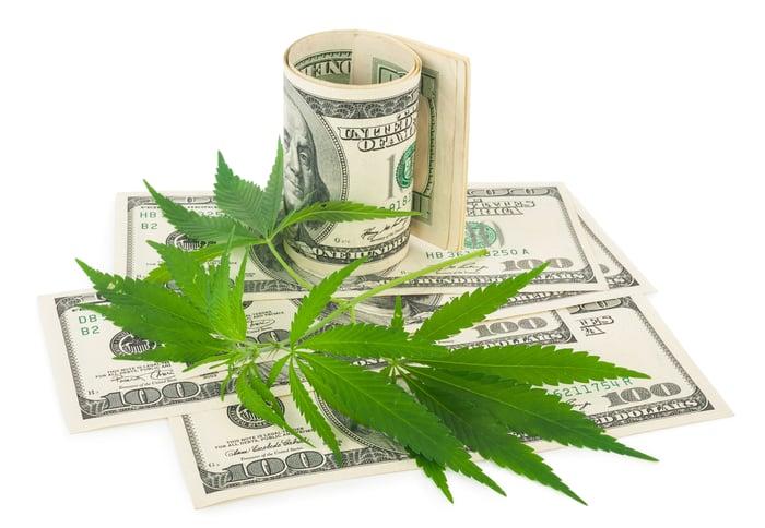 Marijuana leaves atop $100 bills.