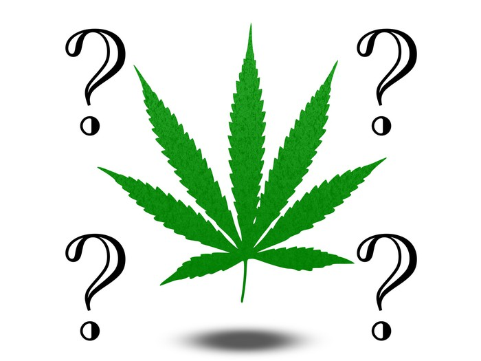 Marijuana leaf with four question marks surrounding it.