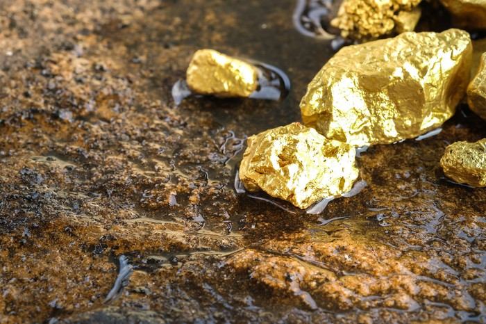 Shiny gold nuggets on wet rock.