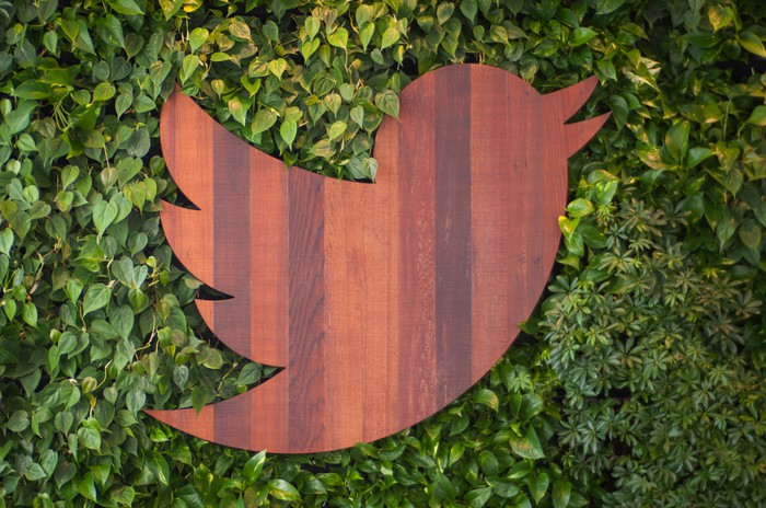 A wood-carved Twitter bird on a leafy background.
