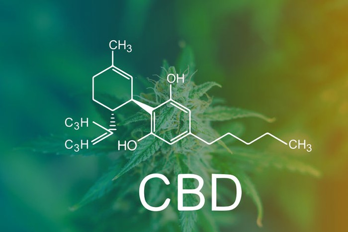 """CBD"" and its molecular structure in white overlaid on a hazy cannabis plant background."