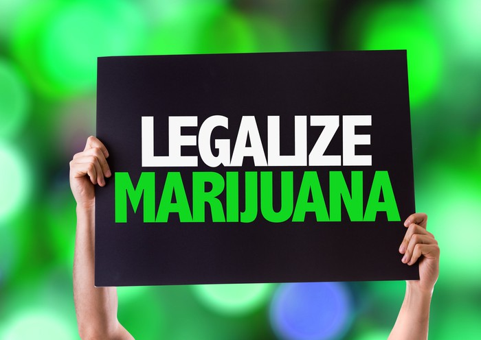 A person holding a sign that reads legalize marijuana.