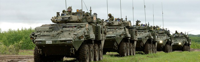 A convoy of LAV 6 armored vehicles on the move.