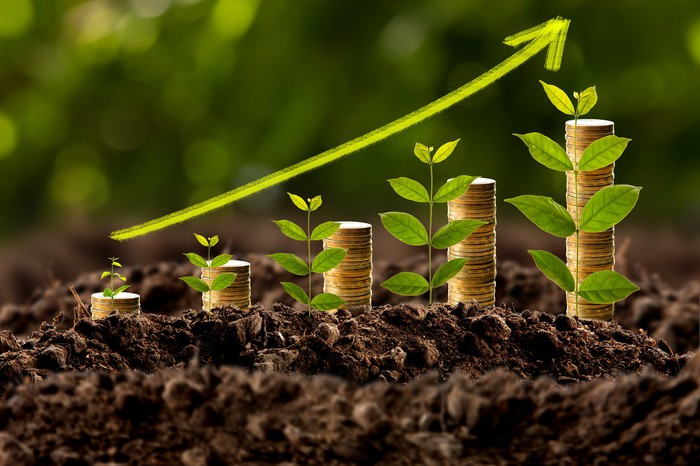 A green upward pointing arrow hovers above successively taller stacks of coins beside plant shoots, depicting income growth.