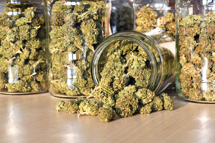Jars filled with dried cannabis flowers laid out on a wooden tabletop, with one turned over and cannabis spilling out on the table.