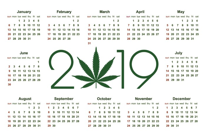 A 2019 calendar with a marijuana leaf in place of the zero in 2019.