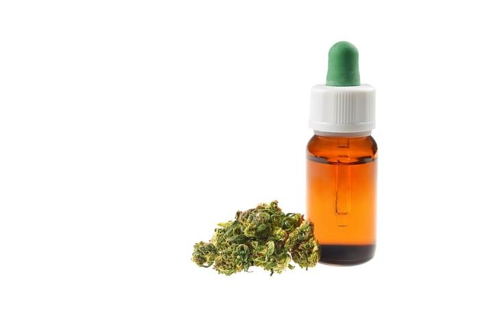 Dried marijuana flowers sitting next to a bottle of CBD oil.