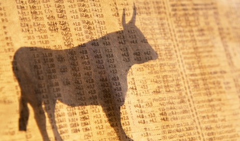 Shadow of a stock market bull on the floor