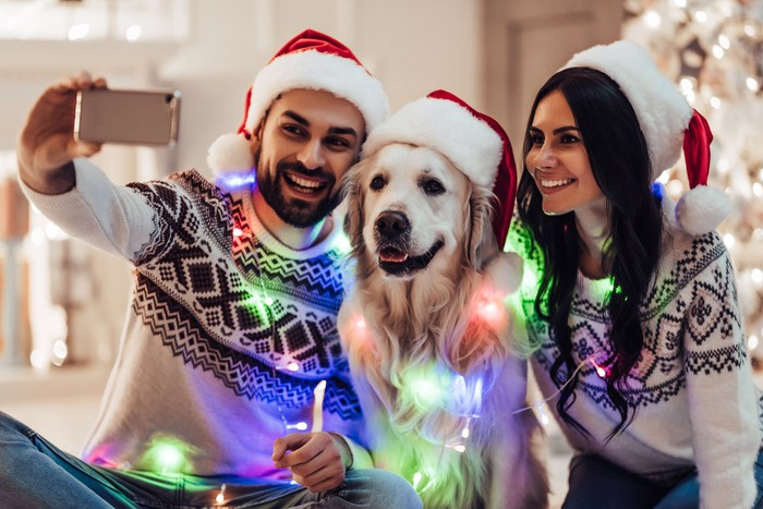 A young couple and their dog wearing Santa Claus hats and a string of Christmas lights draped around their necks take a self-portrait during Christmas.