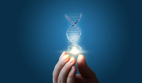 314 DNA in hand