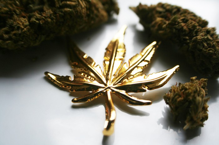 A gold-colored marijuana leaf resting on a table beside marijuana buds.