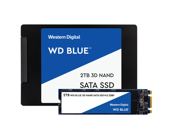 Two Western Digital solid-state drives.