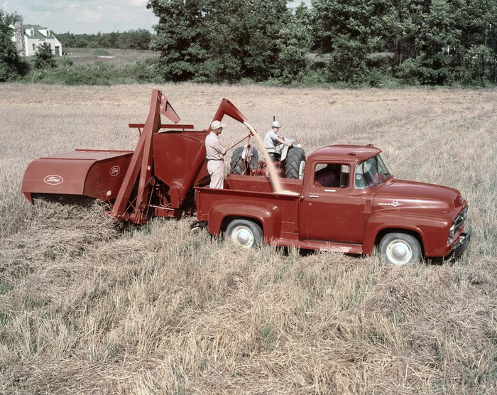 A red 1956 Ford F-100 pickup in a farm's field.