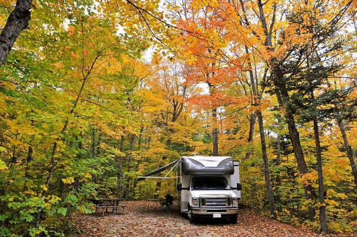 A recreational vehicle camping in a forrest.