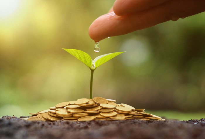Hand pouring drop of water on seedling growing out of coin pile.