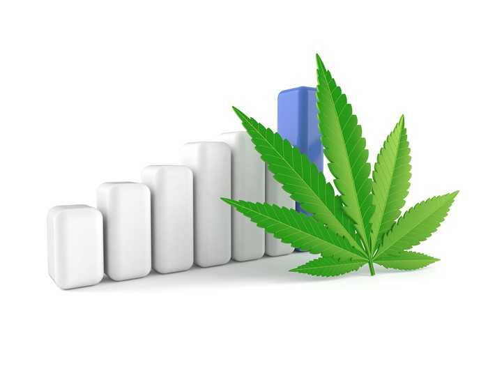 Marijuana leaf next to rising bar chart