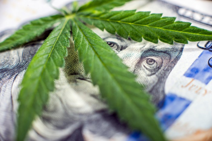 A cannabis leaf lying atop a hundred dollar bill and partially covering Ben Franklin's face, with his eyes visible between the leaves.