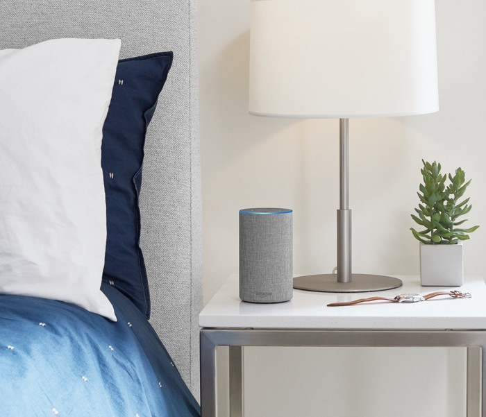 A nightstand next to bed wit blue sheets in a bedroom with a gray Amazon Echo next to a light, a watch, and a small plant.