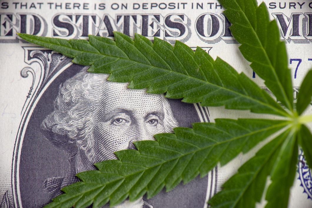 Marijuana leaf sitting on a $1 bill.