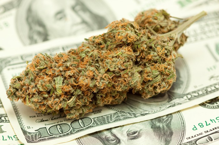A large trimmed cannabis bud lying atop a messy pile of hundred dollar bills.