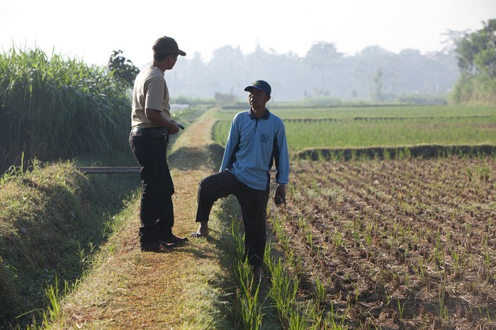 Two people talking in a field with plants growing nearby