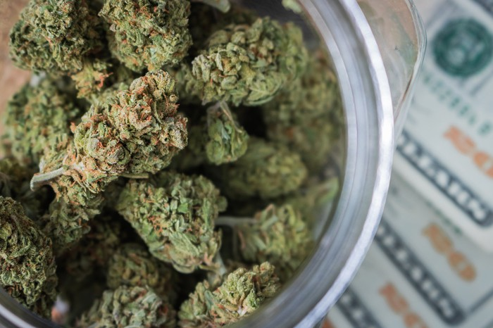 A jar filled with dried cannabis buds lying atop a fanned stack of twenty dollar bills.