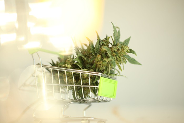 Marijuana flower in a tiny toy shopping cart.