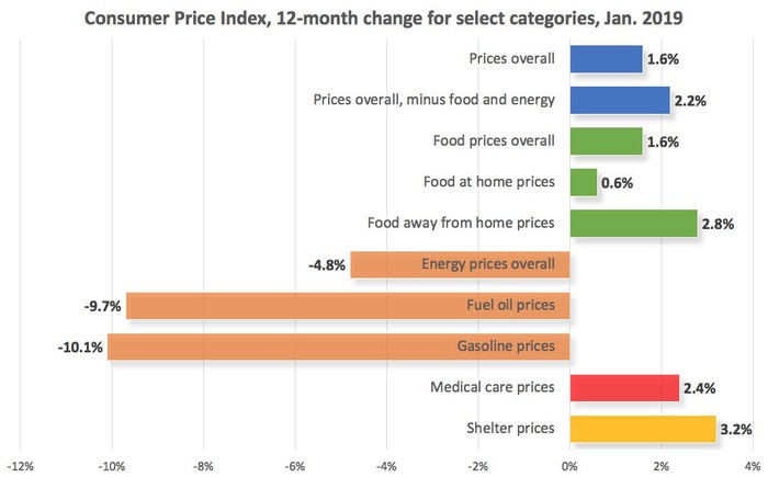 Consumer Price Index, 12-month change for select categories, January 2019, not seasonally adjusted