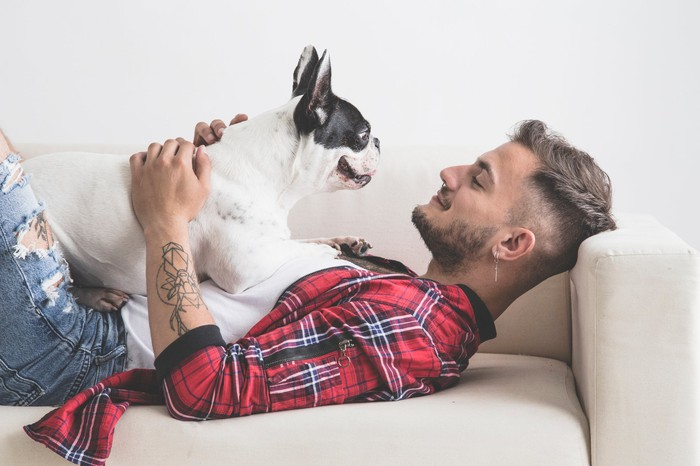 Young man lying on couch, smiling at French bulldog lying on top of him.
