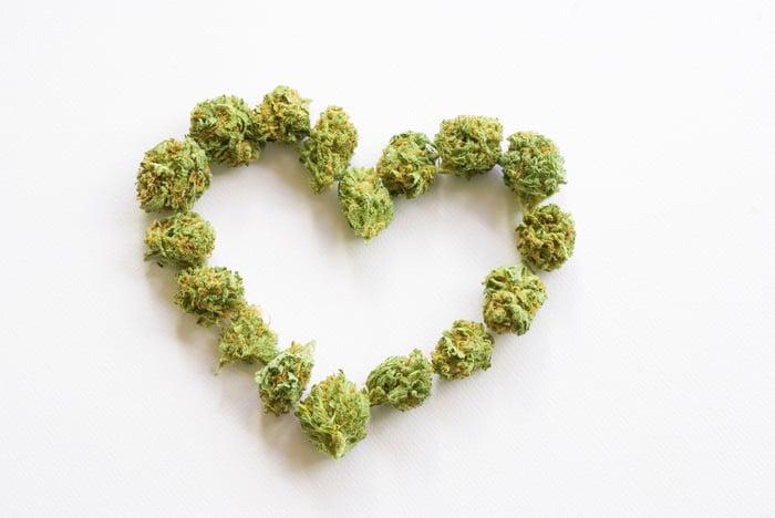 Marijuana buds arranged to make a heart shape