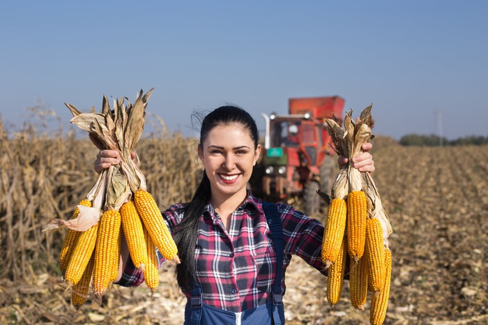 Woman in a field holding up ears of corn