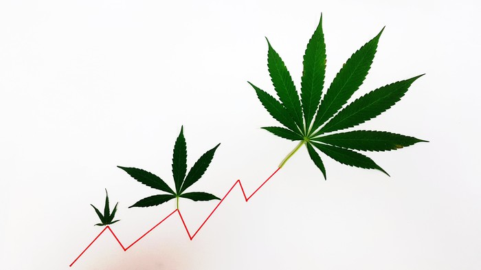 Three marijuana leaves on line chart that is going up and to the right.