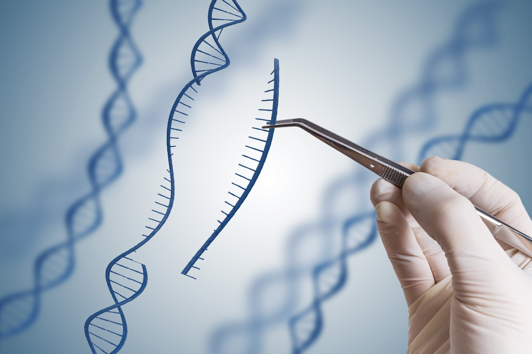 DNA strand being modified by a hand with medical tweezers.