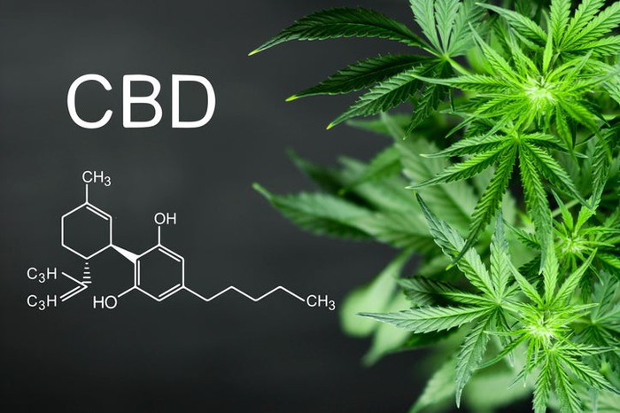 Cannabis plant on right side of image and the letters CBD with its chemical formula on left side.