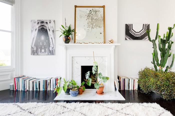 A fireplace surrounded by books, plants, and paintings