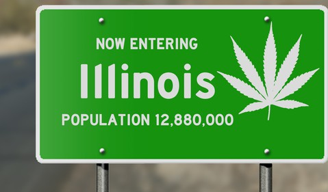 Illinois sign with marijuana leaf